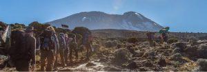 Los 10 más vendidos saco de dormir kilimanjaro